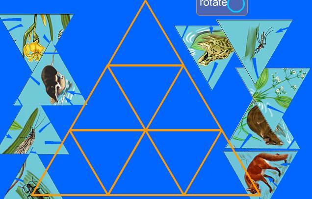 Puzzle Rotativo